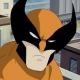 Fan(e) de Wolverine